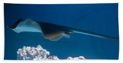 Hand Towel featuring the photograph Blue Spotted Fantail Ray by Eti Reid