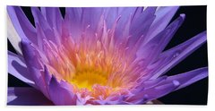 Blue Waterlily 2 Bath Towel
