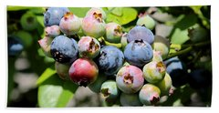 Blueberries On The Vine Hand Towel