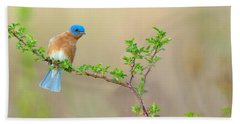 Bluebird Breeze Hand Towel