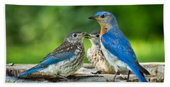 Bluebird - Father And Sons Hand Towel