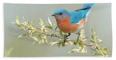 Bluebird Floral Hand Towel by William Jobes