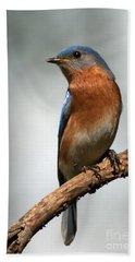 Bluebird- I See You Hand Towel