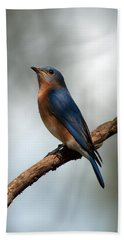 Bluebird -why Yes Hand Towel