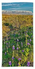 Bluebonnets And Creosote Bushes In Big Bend National Park-texas Bath Towel