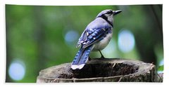 Hand Towel featuring the photograph Bluejay by Alyce Taylor