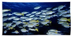 Bluelined Snappers And Yellowspot Emperors Hand Towel