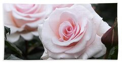 Blush Pink Roses Bath Towel by Rona Black