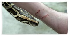 Boa Constrictor Bite Hand Towel by M. Watson