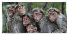 Bonnet Macaques Huddling Western Ghats Bath Towel