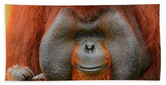 Bornean Orangutan Hand Towel by Lourry Legarde