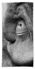 Bornean Orangutan V Hand Towel by Lourry Legarde