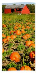 Bountiful Crop Bath Towel by Kathy Barney