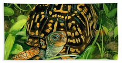 Box Turtle Hand Towel