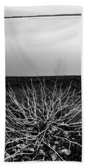 Hand Towel featuring the photograph Branching Out by Brian Duram