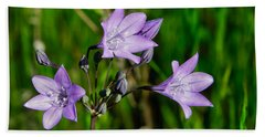 Hand Towel featuring the photograph Bridges' Triteleia by Jim Thompson