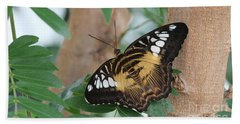 Bath Towel featuring the photograph Brown Clipper Butterfly #5 by Judy Whitton