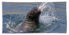 Brown Fur Seal Throwing A Fish Head Hand Towel