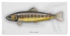 Brown Trout - Salmo Trutta Morpha Fario - Salmo Trutta Fario - Game Fish - Flyfishing Bath Towel