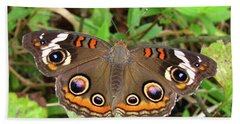 Bath Towel featuring the photograph Buckeye Butterfly by Donna Brown
