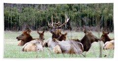 Bull Elk And His Girls Bath Towel