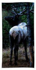 Bull Elk In Moonlight  Hand Towel