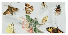 Butterflies Moths And Other Insects With A Sprig Of Apple Blossom Hand Towel