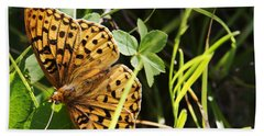 Hand Towel featuring the photograph Butterfly At Signal Mountain by Belinda Greb