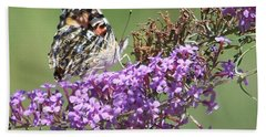 Bath Towel featuring the photograph Painted Lady Butterfly by Eunice Miller