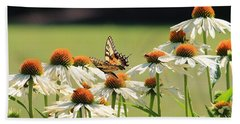 Butterfly On Echinacea Bath Towel