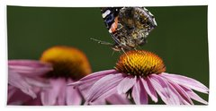 Bath Towel featuring the photograph Butterfly Red Admiral On Echinacea by Peter v Quenter