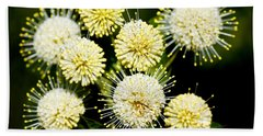 Buttonbush Hand Towel