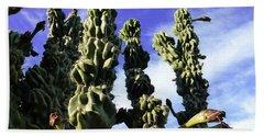Bath Towel featuring the photograph Cactus 2 by Mariusz Kula
