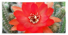 Cactus Flower Hand Towel by Ramona Matei