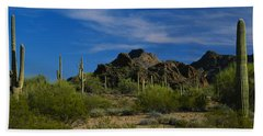 Cactus Plant On A Landscape, Sonoran Hand Towel