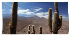 Cactus With The Andes Mountains Bath Towel
