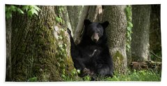 Cades Cove Bear Hand Towel
