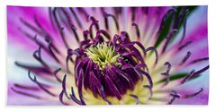 Candy Stripe Clematis Hand Towel