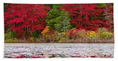 Hand Towel featuring the photograph Cape Cod Autumn by Dianne Cowen