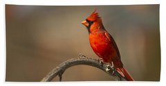 Bath Towel featuring the photograph Cardinal by Jerry Gammon