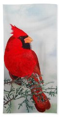 Cardinal Hand Towel by Laurel Best