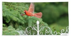 Bath Towel featuring the photograph Cardinal Time To Soar by Thomas Woolworth