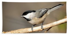 Carolina Chickadee  Hand Towel by Kerri Farley