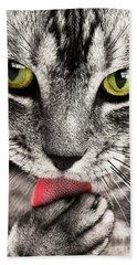 Hand Towel featuring the photograph Cat by Paul Fearn