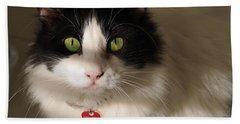 Cat's Eye Hand Towel