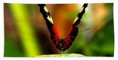 Bath Towel featuring the photograph Cattleheart Butterfly  by Amy McDaniel