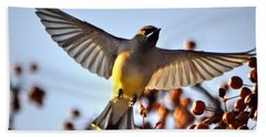 Cedar Waxwing Flight Hand Towel
