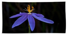 Celestial Lily Hand Towel by Paul Rebmann