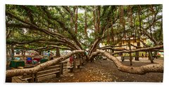 Center Court - Banyan Tree Park In Maui. Hand Towel