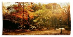 Central Park Autumn Trees In Sunlight Hand Towel